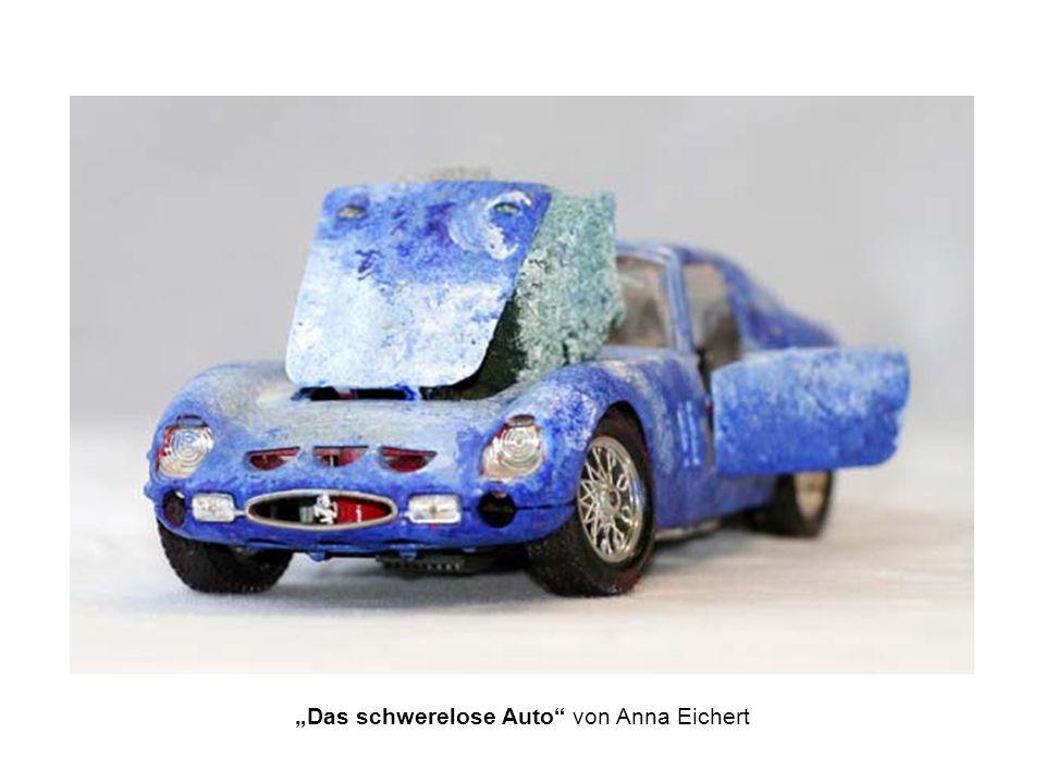 Das schwerelose Auto von Anna Eichert