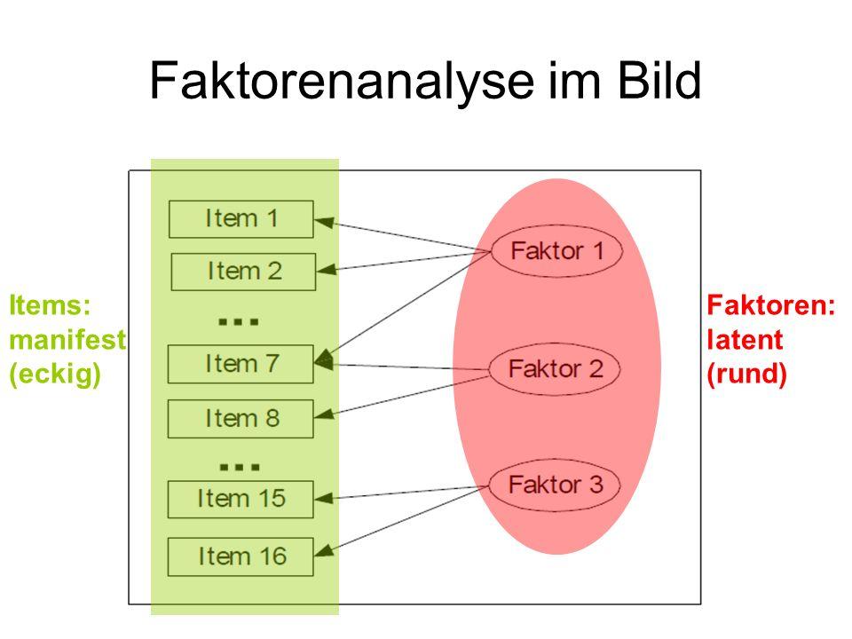 Faktorenanalyse im Bild Faktoren: latent (rund) Items: manifest (eckig)