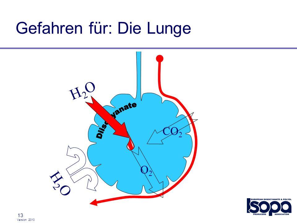 Version 2010 13 Gefahren für: Die Lunge CO 2 O2O2 H2OH2O H2OH2O