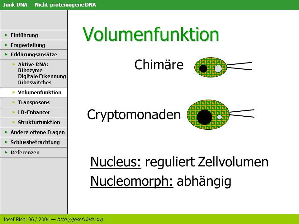 Junk DNA Nicht-proteinogene DNA Josef Riedl 06 / 2004 http://josef.riedl.org Volumenfunktion Chimäre Einführung Fragestellung Erklärungsansätze Aktive