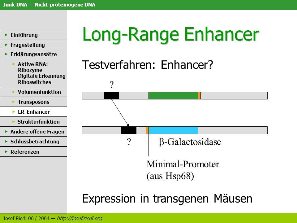 Junk DNA Nicht-proteinogene DNA Josef Riedl 06 / 2004 http://josef.riedl.org Long-Range Enhancer Testverfahren: Enhancer? Einführung Fragestellung Erk