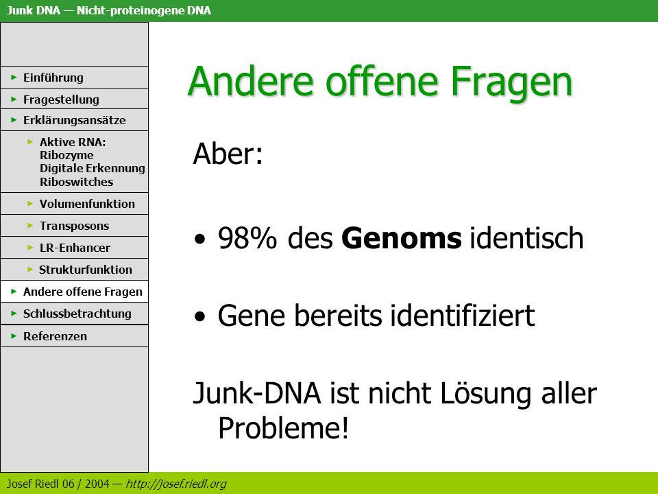 Junk DNA Nicht-proteinogene DNA Josef Riedl 06 / 2004 http://josef.riedl.org Andere offene Fragen Einführung Fragestellung Erklärungsansätze Aktive RN