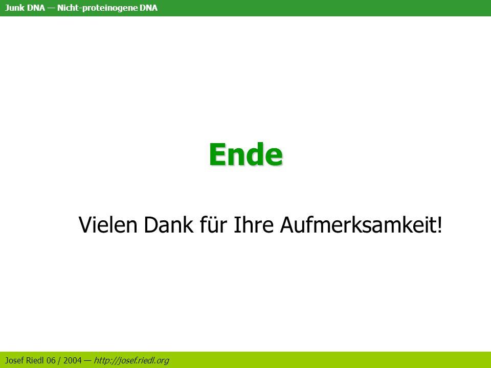 Junk DNA Nicht-proteinogene DNA Josef Riedl 06 / 2004 http://josef.riedl.org Ende Vielen Dank für Ihre Aufmerksamkeit!