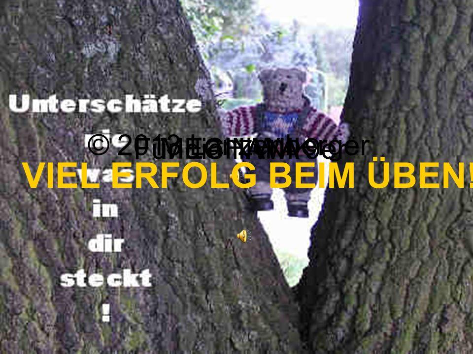 MECHANIK © 2013 Lanzenberger Für die NWA 9er VIEL ERFOLG BEIM ÜBEN!