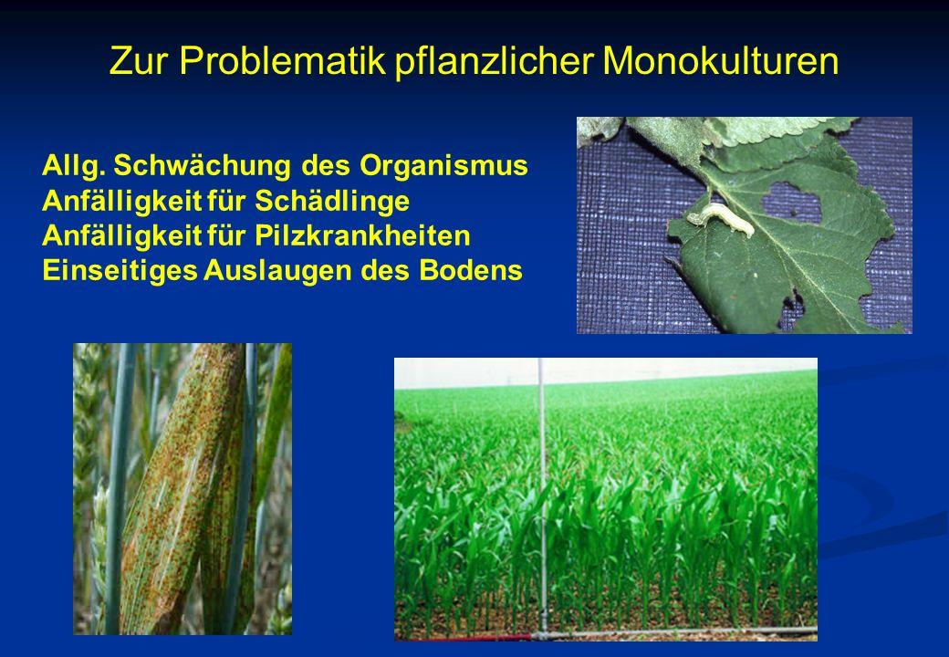 Zur Problematik pflanzlicher Monokulturen Allg. Schwächung des Organismus Anfälligkeit für Schädlinge Anfälligkeit für Pilzkrankheiten Einseitiges Aus