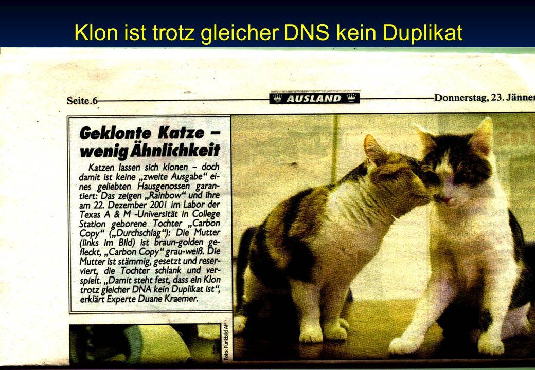 Links zum Thema Klonen - Ethik http://cloning.ch/ http://cloning.ch/cloning/links-klonen.html http://cloning.ch/cloning/links-andere.html http://www.heise.de/tp/deutsch/special/klon/default.html http://www.unki.de/schulcd/bio/klonen.htm http://www.klonen-info.de/ http://www.aerztezeitung.de/medizin/gentechnik/klonen/ http://www.cec-kek.org/Deutsch/cloningd.htm