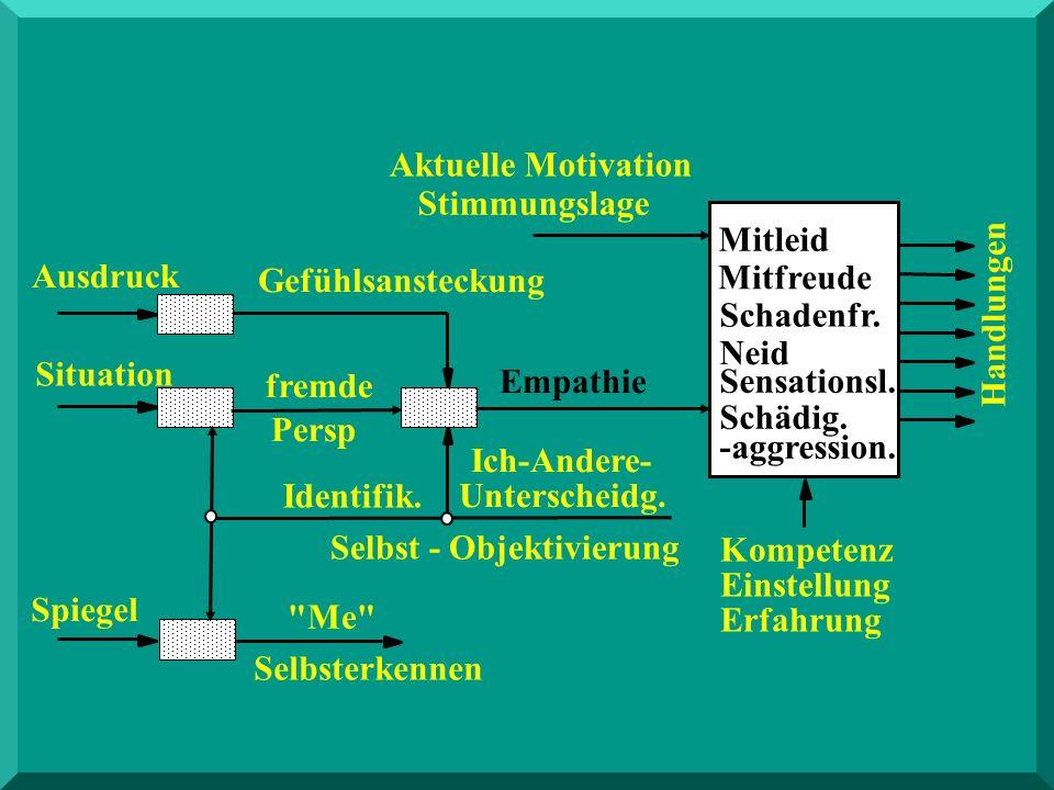 Spiegel Empathie Einstellung Erfahrung Kompetenz Aktuelle Motivation Stimmungslage Ich-Andere- Unterscheidg. Identifik. Gefühlsansteckung Selbst - Obj