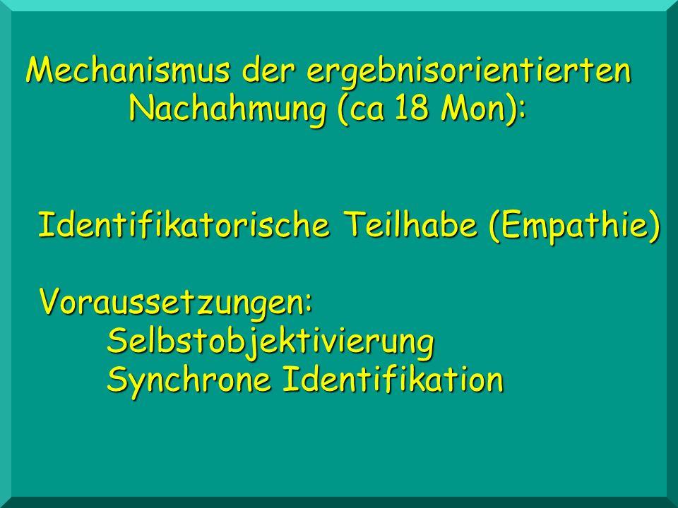 Identifikatorische Teilhabe (Empathie) Voraussetzungen: Selbstobjektivierung Synchrone Identifikation Mechanismus der ergebnisorientierten Nachahmung