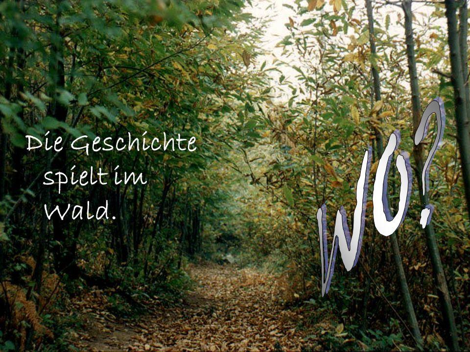 Die Geschichte spielt im Wald.