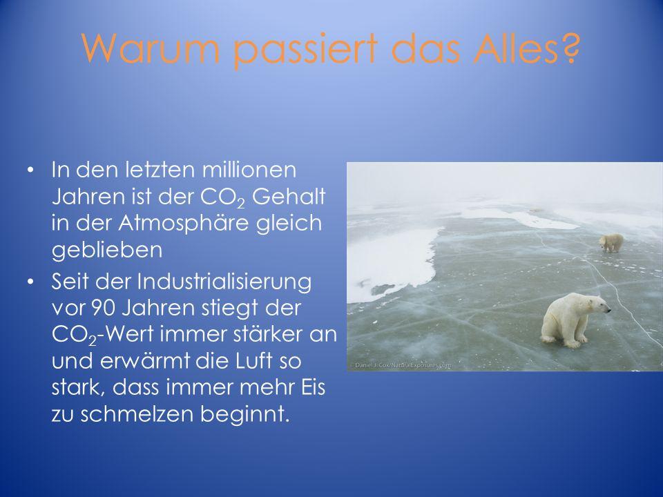 Warum passiert das Alles? In den letzten millionen Jahren ist der CO 2 Gehalt in der Atmosphäre gleich geblieben Seit der Industrialisierung vor 90 Ja