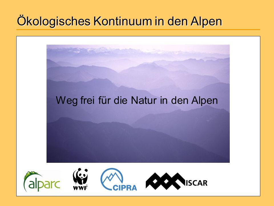 Ökologisches Kontinuum in den Alpen Weg frei für die Natur in den Alpen