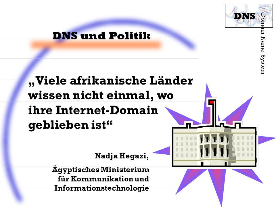 DNS und Politik Domain Name System DNS Viele afrikanische Länder wissen nicht einmal, wo ihre Internet-Domain geblieben ist Nadja Hegazi, Ägyptisches