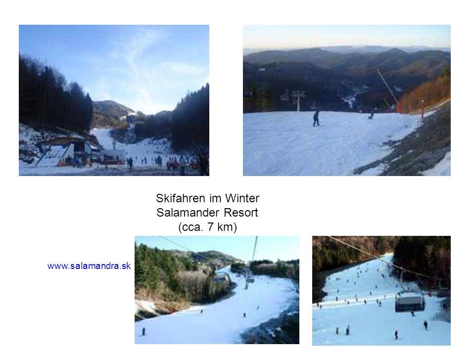 Skifahren im Winter Salamander Resort (cca. 7 km) www.salamandra.sk