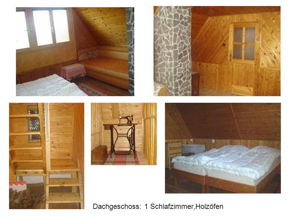 Dachgeschoss: 1 Schlafzimmer,Holzöfen