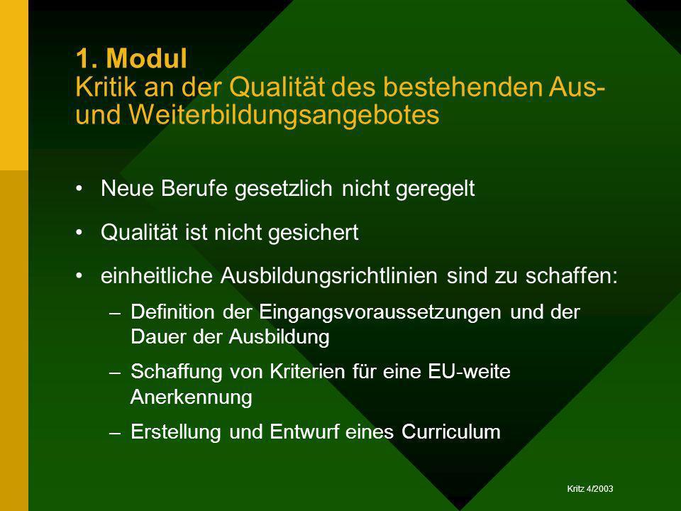 Kritz 4/2003 1. Modul Kritik an der Qualität des bestehenden Aus- und Weiterbildungsangebotes Neue Berufe gesetzlich nicht geregelt Qualität ist nicht