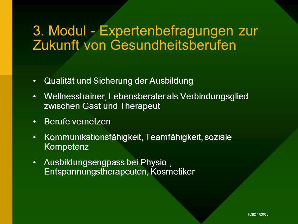 Kritz 4/2003 3. Modul - Expertenbefragungen zur Zukunft von Gesundheitsberufen Qualität und Sicherung der Ausbildung Wellnesstrainer, Lebensberater al