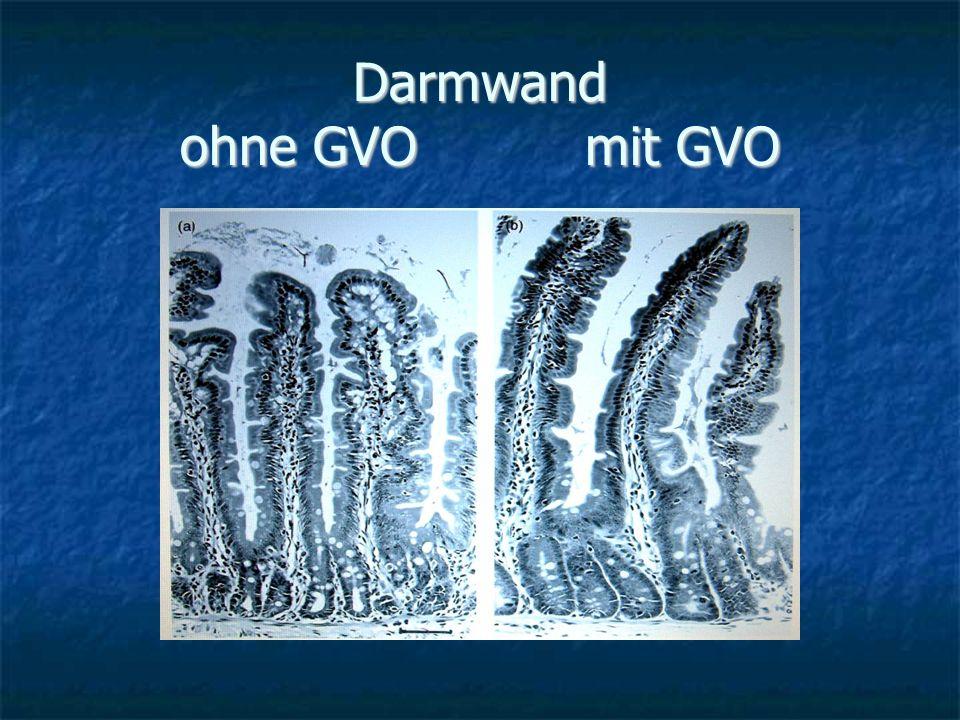 Darmwand ohne GVO mit GVO