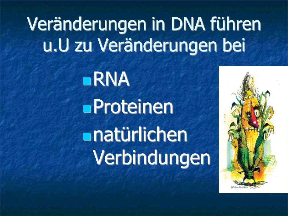 Veränderungen in DNA führen u.U zu Veränderungen bei RNA RNA Proteinen Proteinen natürlichen Verbindungen natürlichen Verbindungen
