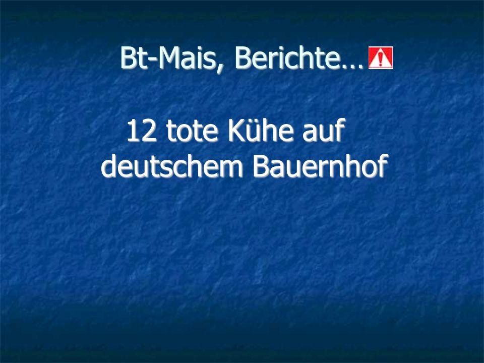 Bt-Mais, Berichte… 12 tote Kühe auf deutschem Bauernhof