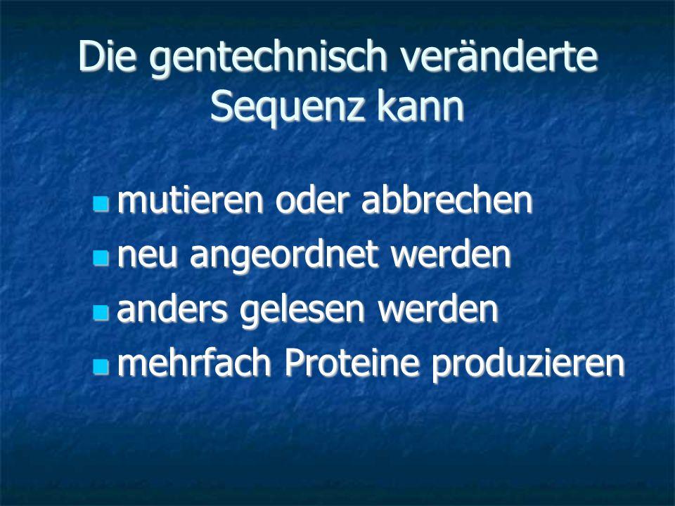 Die gentechnisch veränderte Sequenz kann mutieren oder abbrechen mutieren oder abbrechen neu angeordnet werden neu angeordnet werden anders gelesen we