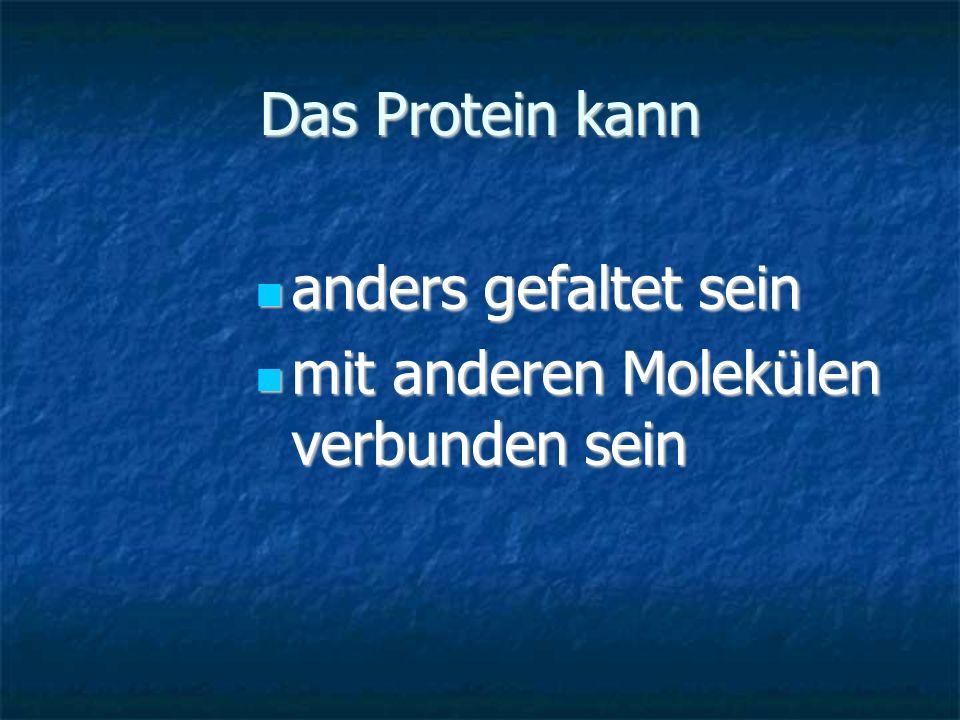 Das Protein kann anders gefaltet sein anders gefaltet sein mit anderen Molekülen verbunden sein mit anderen Molekülen verbunden sein