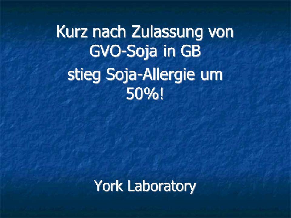 Kurz nach Zulassung von GVO-Soja in GB stieg Soja-Allergie um 50%! York Laboratory