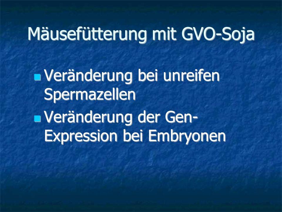 Mäusefütterung mit GVO-Soja Veränderung bei unreifen Spermazellen Veränderung bei unreifen Spermazellen Veränderung der Gen- Expression bei Embryonen