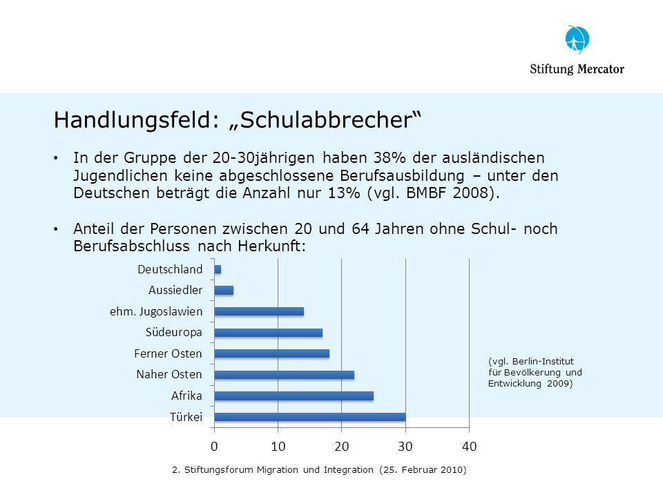 Handlungsfeld: Schulabbrecher In der Gruppe der 20-30jährigen haben 38% der ausländischen Jugendlichen keine abgeschlossene Berufsausbildung – unter d