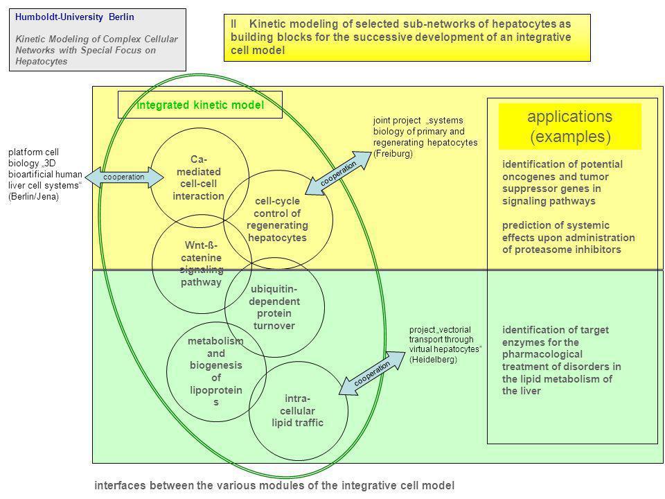 bisher nicht bearbeitet Schnittstelle: alle molekularen Interaktionen, die nicht explizit im Modell berücksichtigt sind bisher nicht bearbeitet welche Modelle.
