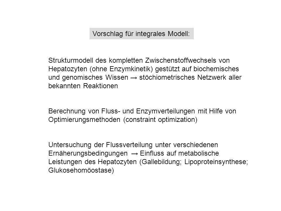 Vorschlag für integrales Modell: Strukturmodell des kompletten Zwischenstoffwechsels von Hepatozyten (ohne Enzymkinetik) gestützt auf biochemisches un