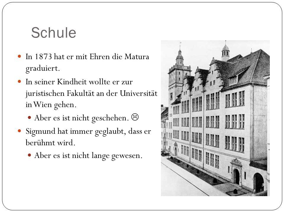 Schule In 1873 hat er mit Ehren die Matura graduiert. In seiner Kindheit wollte er zur juristischen Fakultät an der Universität in Wien gehen. Aber es