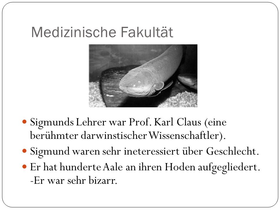 Medizinische Fakultät Sigmunds Lehrer war Prof. Karl Claus (eine berühmter darwinstischer Wissenschaftler). Sigmund waren sehr ineteressiert über Gesc