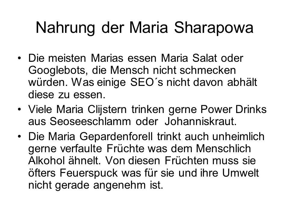 Nahrung der Maria Sharapowa Die meisten Marias essen Maria Salat oder Googlebots, die Mensch nicht schmecken würden. Was einige SEO´s nicht davon abhä