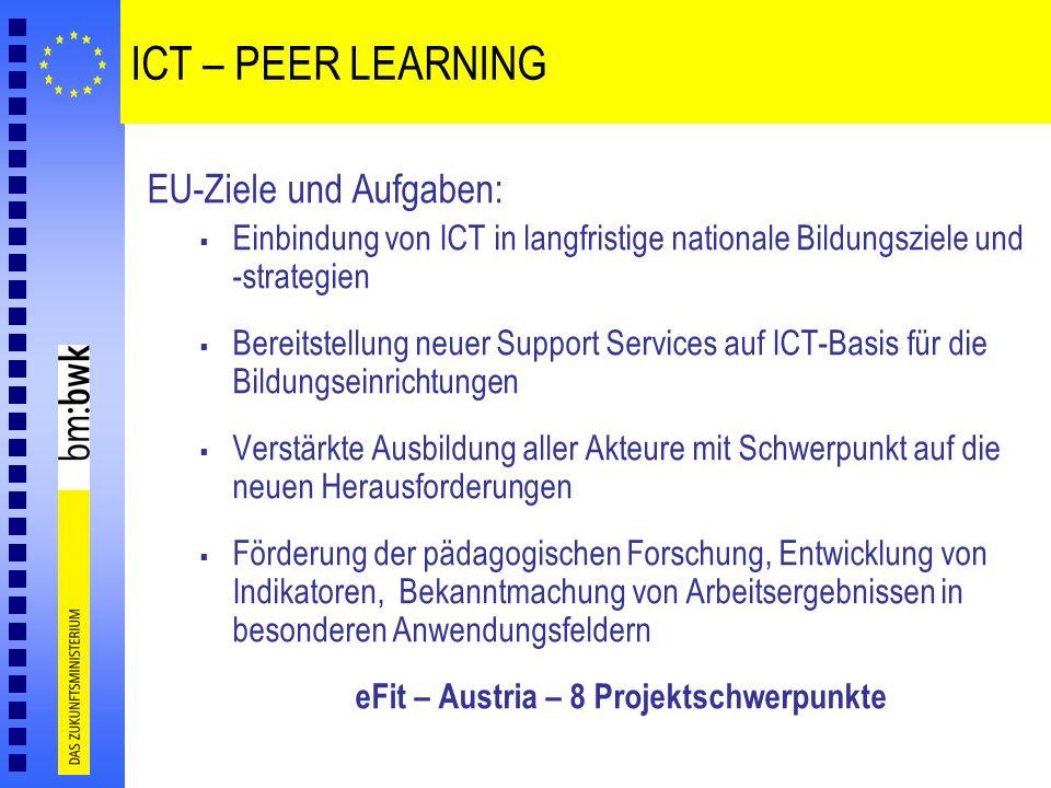 ICT – PEER LEARNING EU-Ziele und Aufgaben: Einbindung von ICT in langfristige nationale Bildungsziele und -strategien Bereitstellung neuer Support Ser