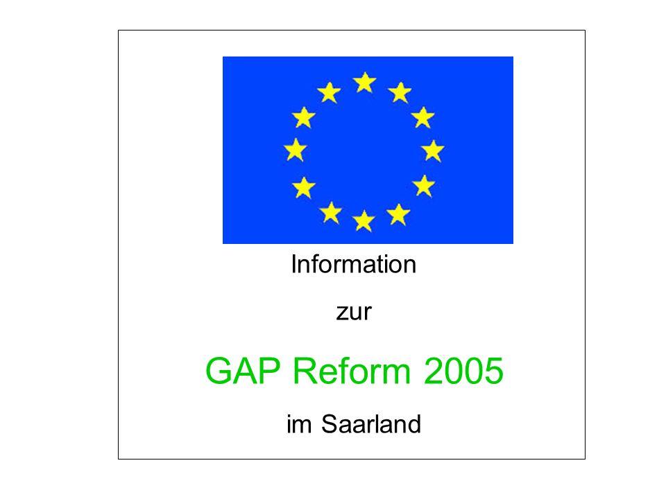 GAP-Reform 2005 Wichtige Elemente der EU-Agrar-Reform Entkopplung der Ausgleichszahlung Bindung der Ausgleichszahlung an neue Kriterien – CROSS COMPLIANCE 19 EU-Verordnungen und Richtlinien Gute landwirtschaftliche und ökologische Bedingungen Dauergrünlanderhaltung Kürzung der Ausgleichszahlungen – Modulation Änderung bei der EU-Marktordnung MILCH Wegfall der Roggenintervention