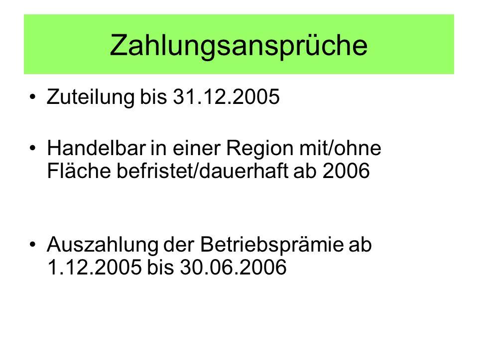 Zahlungsansprüche Zuteilung bis 31.12.2005 Handelbar in einer Region mit/ohne Fläche befristet/dauerhaft ab 2006 Auszahlung der Betriebsprämie ab 1.12