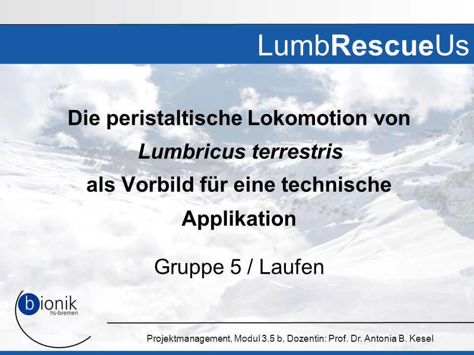 Projektmanagement, Modul 3.5 b, Dozentin: Prof. Dr. Antonia B. Kesel LumbRescueUs Die peristaltische Lokomotion von Lumbricus terrestris als Vorbild f