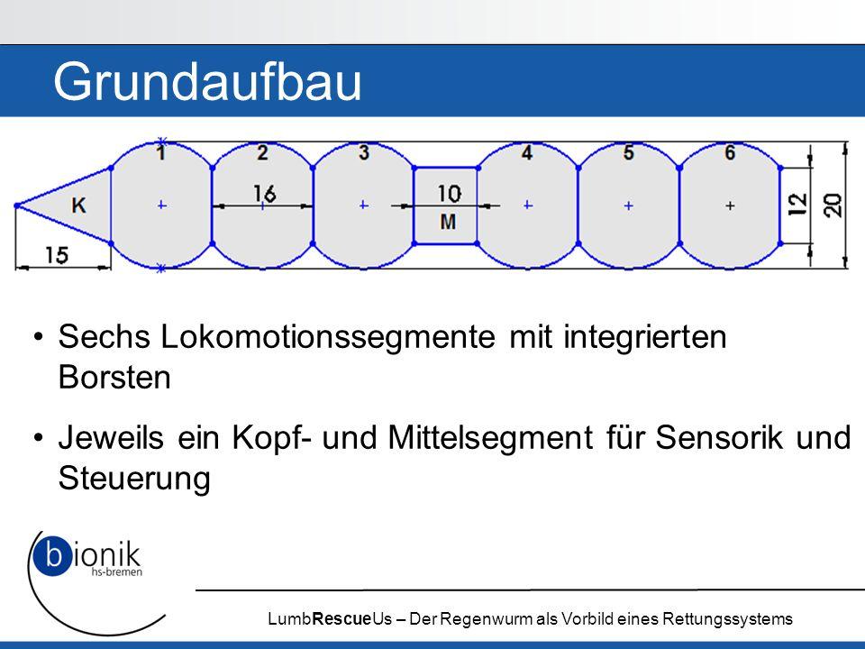 LumbRescueUs – Der Regenwurm als Vorbild eines Rettungssystems Grundaufbau Sechs Lokomotionssegmente mit integrierten Borsten Jeweils ein Kopf- und Mi