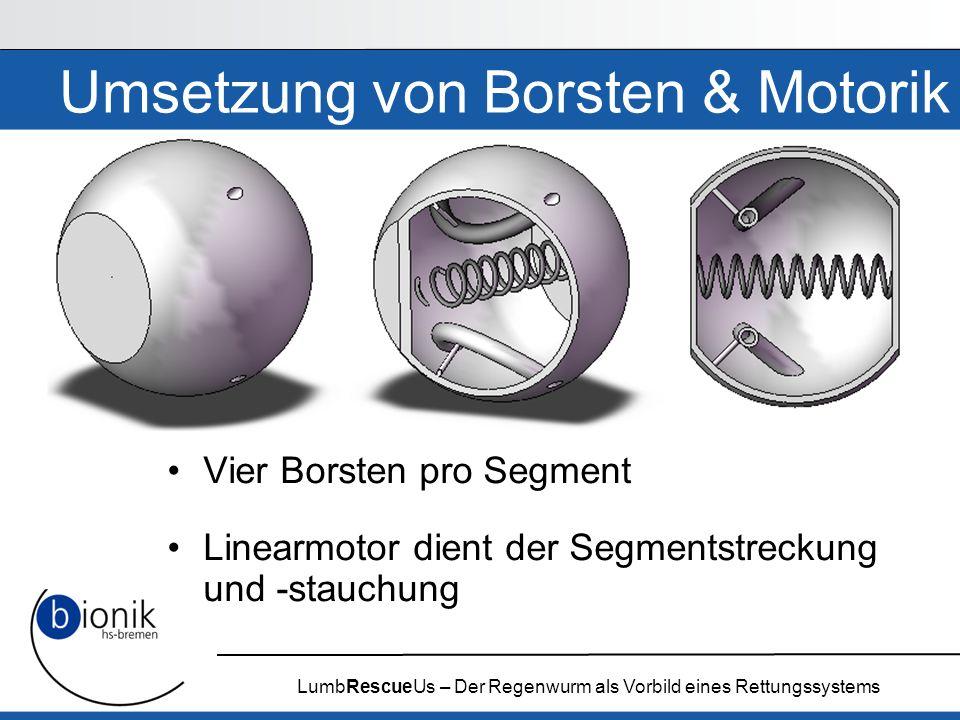 LumbRescueUs – Der Regenwurm als Vorbild eines Rettungssystems Umsetzung von Borsten & Motorik Vier Borsten pro Segment Linearmotor dient der Segments