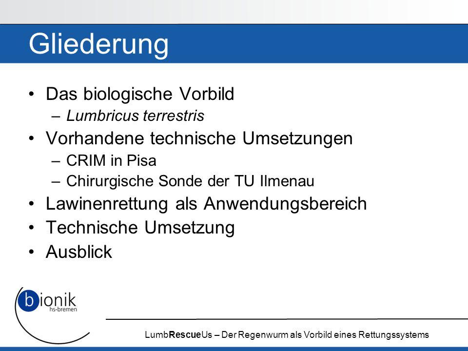 LumbRescueUs – Der Regenwurm als Vorbild eines Rettungssystems Gliederung Das biologische Vorbild –Lumbricus terrestris Vorhandene technische Umsetzun