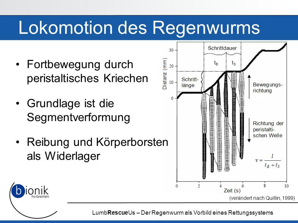 LumbRescueUs – Der Regenwurm als Vorbild eines Rettungssystems Material Außenmaterial aus TPE-E (Thermoplastisches Polyester-Elastomer) –Sehr gute Kälte-, Witterungs- und Lösungsmittelbeständig –Gute Elastizität Hydraulikflüssigkeit als Widerlager der Lokomotion –5,4 molare NaCl Lösung für niedrigen Gefrierpunkt –< 0,1 % KMnO 4 dient der Färbung Borsten aus Kunststoff