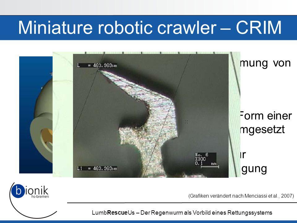 LumbRescueUs – Der Regenwurm als Vorbild eines Rettungssystems Miniature robotic crawler – CRIM Segmentverformung von L. terrestris als Grundlage Musk