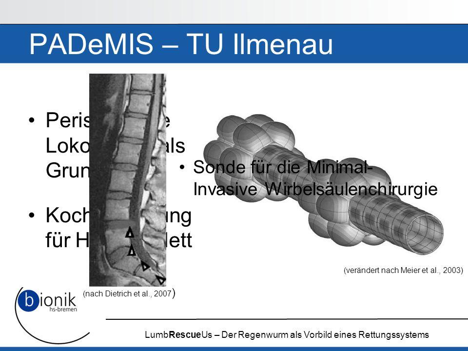 LumbRescueUs – Der Regenwurm als Vorbild eines Rettungssystems PADeMIS – TU Ilmenau Peristaltische Lokomotion als Grundlage Kochsalzlösung für Hydrosk