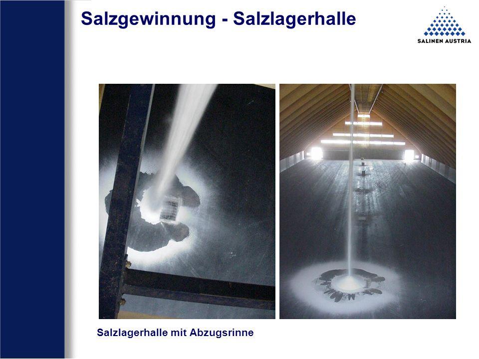 Salzgewinnung - Salzlagerhalle Salzlagerhalle mit Abzugsrinne