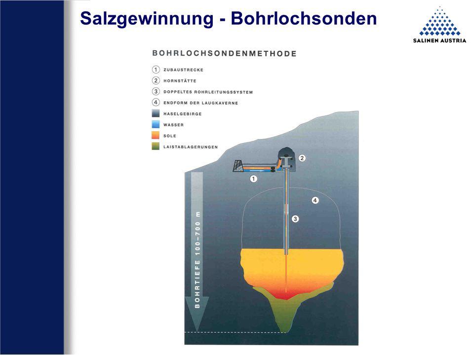 Salzgewinnung - Bohrlochsonden