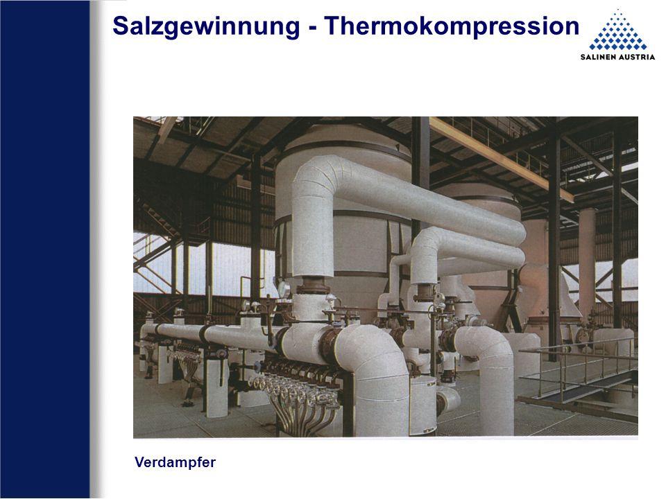Salzgewinnung - Thermokompression Brüdenwäscher und Verdampfer