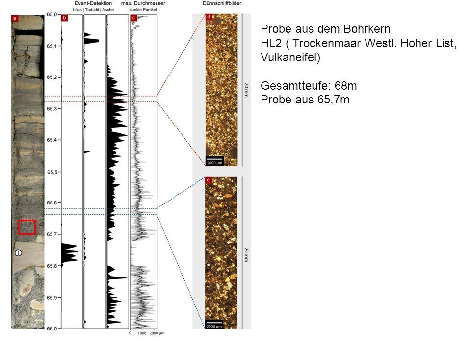 Probe aus dem Bohrkern HL2 ( Trockenmaar Westl. Hoher List, Vulkaneifel) Gesamtteufe: 68m Probe aus 65,7m