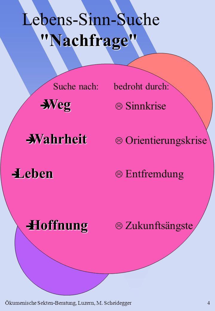 Ökumenische Sekten-Beratung, Luzern, M. Scheidegger4