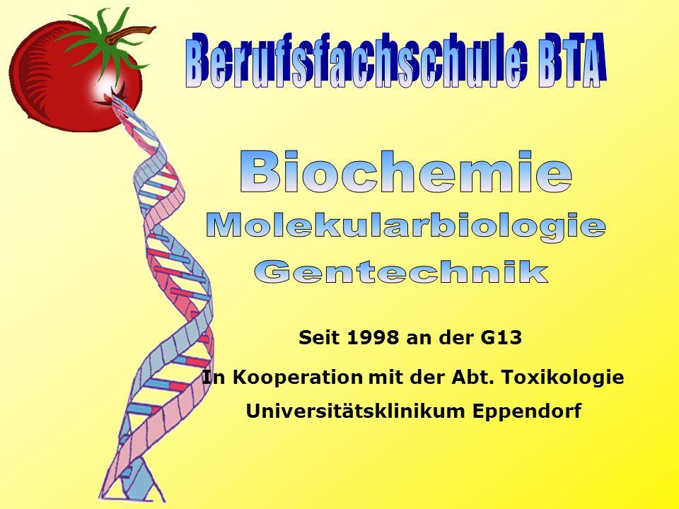 Seit 1998 an der G13 In Kooperation mit der Abt. Toxikologie Universitätsklinikum Eppendorf