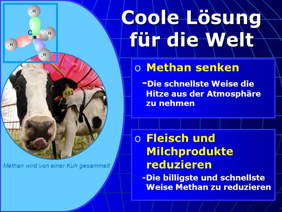 oMethan senken - Die schnellste Weise die Hitze aus der Atmosphäre zu nehmen oFleisch und Milchprodukte reduzieren -Die billigste und schnellste Weise